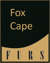 fox-cape-cat
